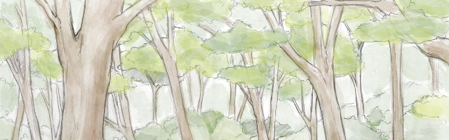 forest watercolor - 640x200